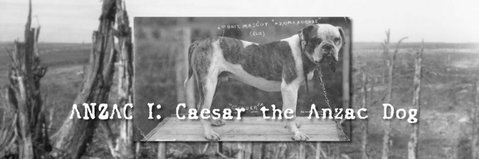 ANZAC I: Caesar the Anzac Dog